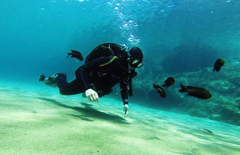 Discover Scuba Diver Recreational diving courses in Lanzarote