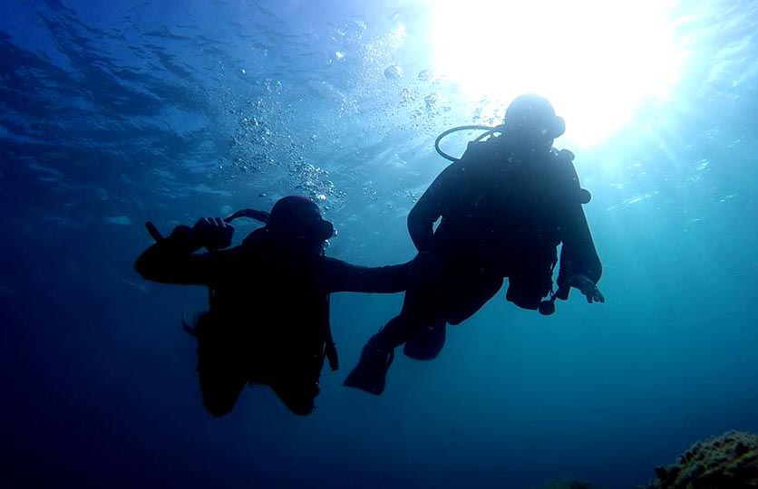 Recreational Diving Courses